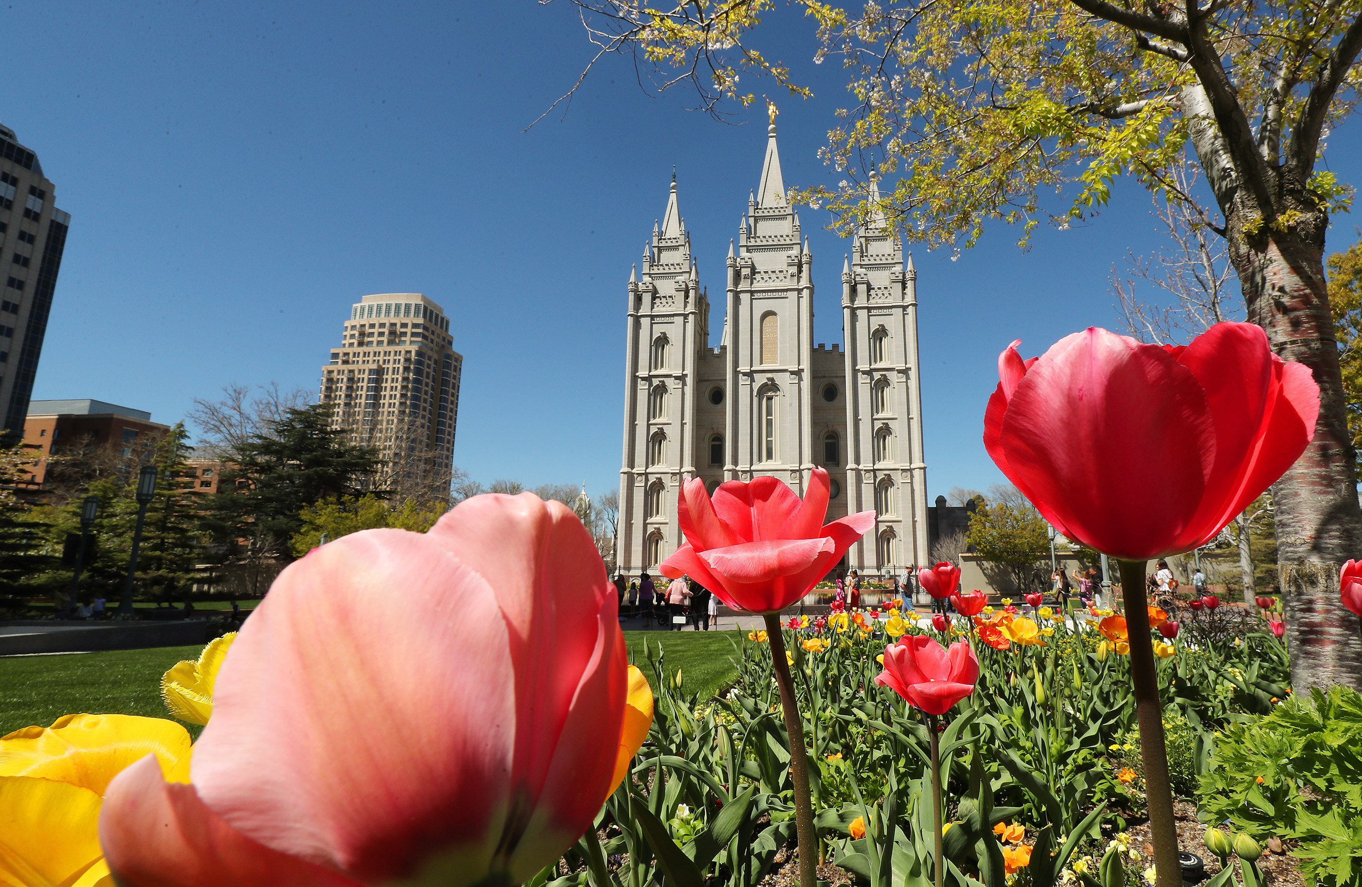 Flowers adorn the grounds surrounding the Salt Lake Temple in Salt Lake City on Friday, April 19, 2019. Leadership of The Church of Jesus Christ of Latter-day Saints announced renovation plans for the Salt Lake Temple and changes to the temple grounds and Temple Square.