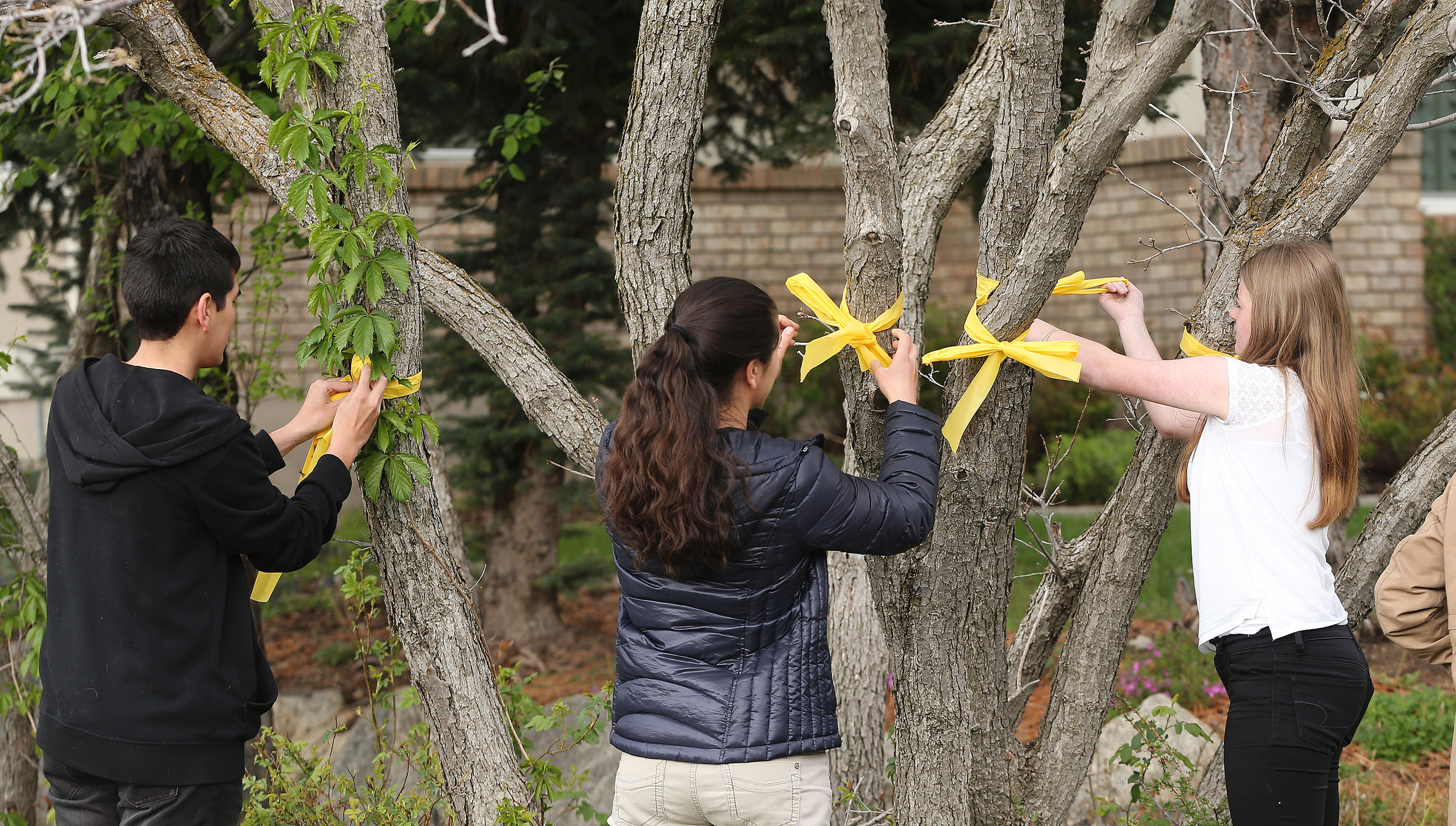 Yellow ribbons are hung to welcome home Elder Mason Wells as he returns home in Sandy Thursday, April 28, 2016 after sprending 37 days in the hospital after being injured in the Brussels terrorist attack.