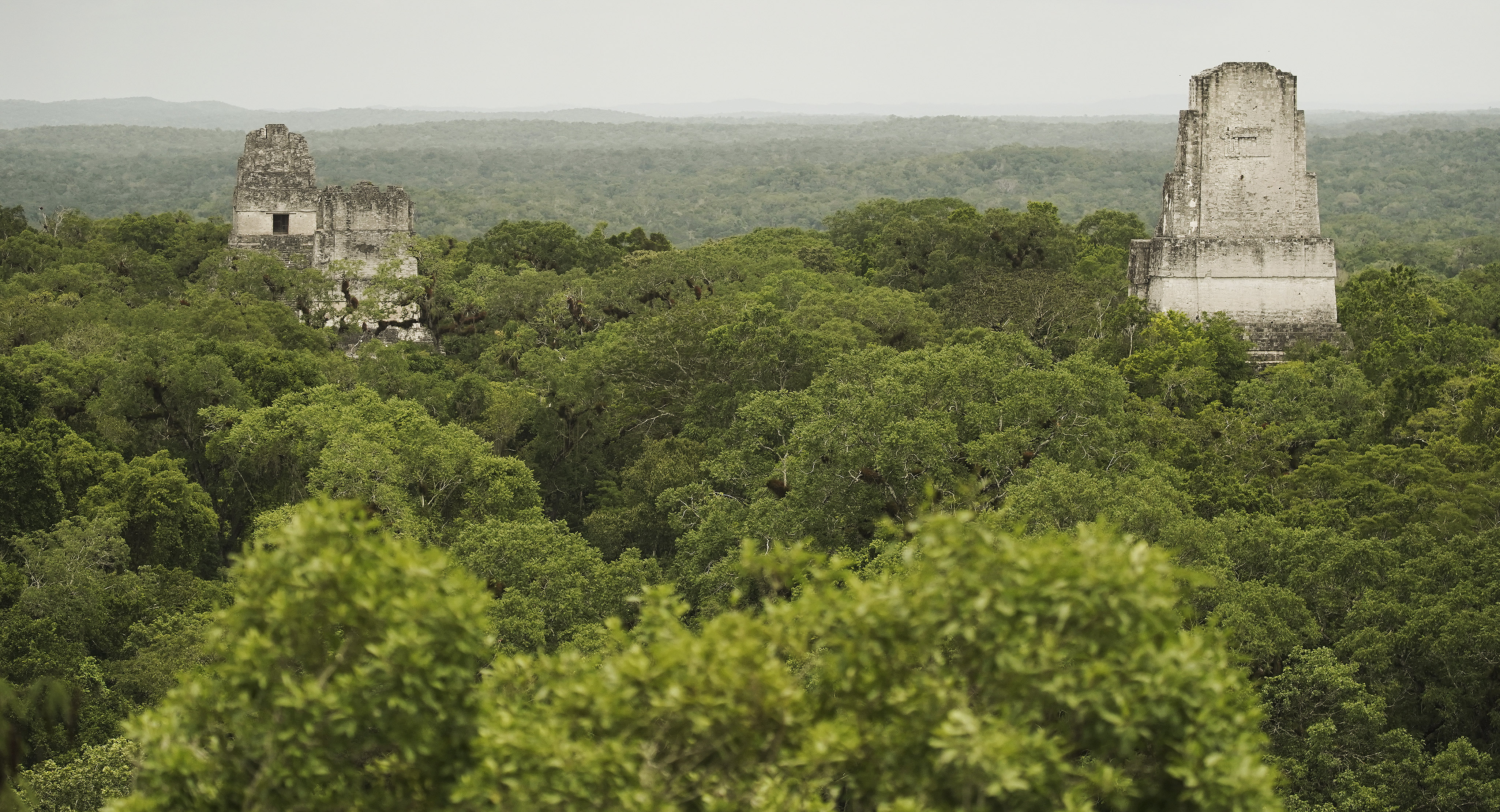 Mayan temples I, II, and III are surrounded by forest in Tikal, Guatemala, on Thursday, Aug. 22, 2019. President Russell M. Nelson of The Church of Jesus Christ of Latter-day Saints spoke in a devotional in Guatemala City on Saturday, Aug. 24.