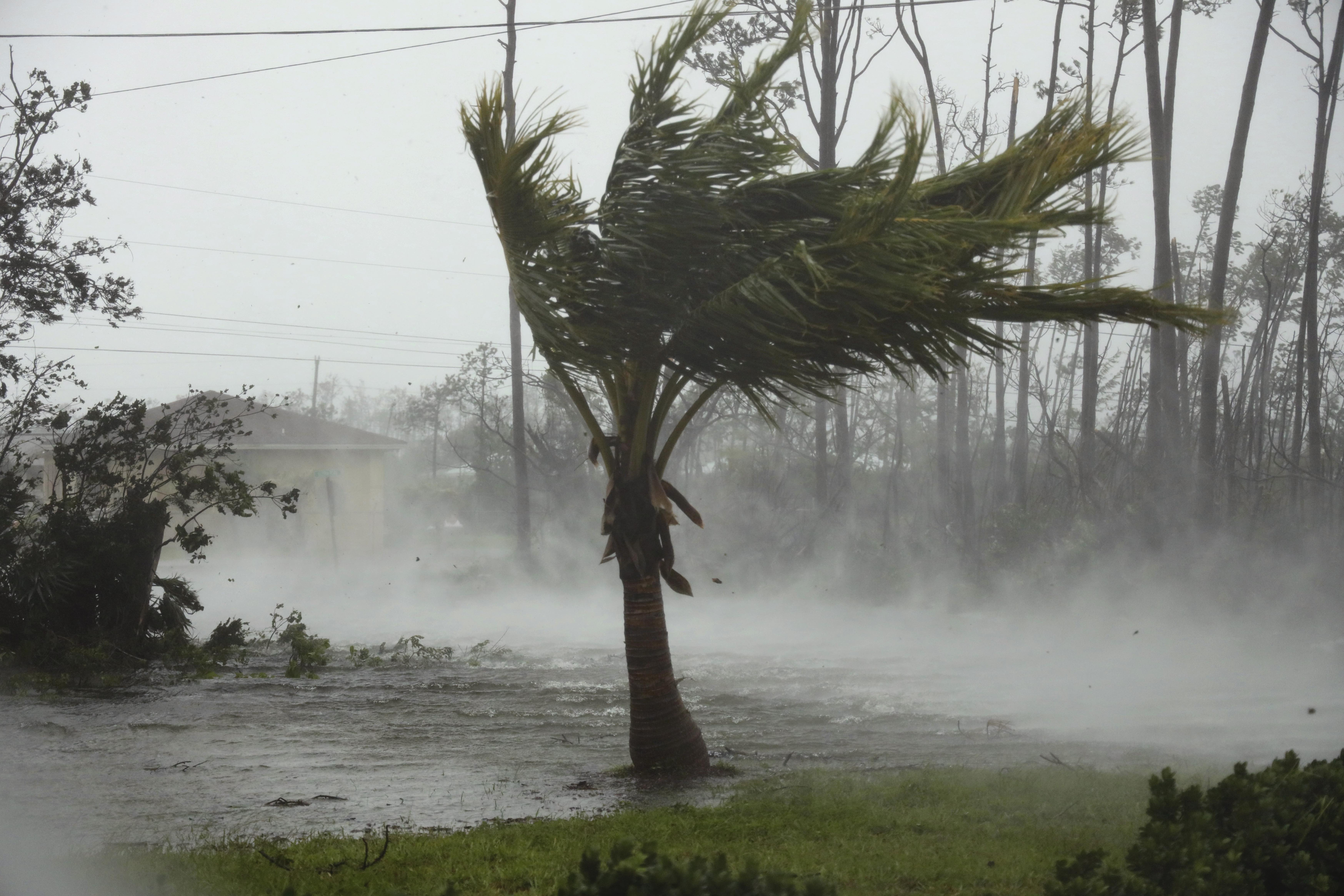 Winds from Hurricane Dorian whip through a neighbourhood in Freeport, Grand Bahama Monday Sept 2, 2019. Hurricane Dorian weakened in strength to a category 4 storm as it passed over the island of Grand Bahama in the Northwest Bahamas.