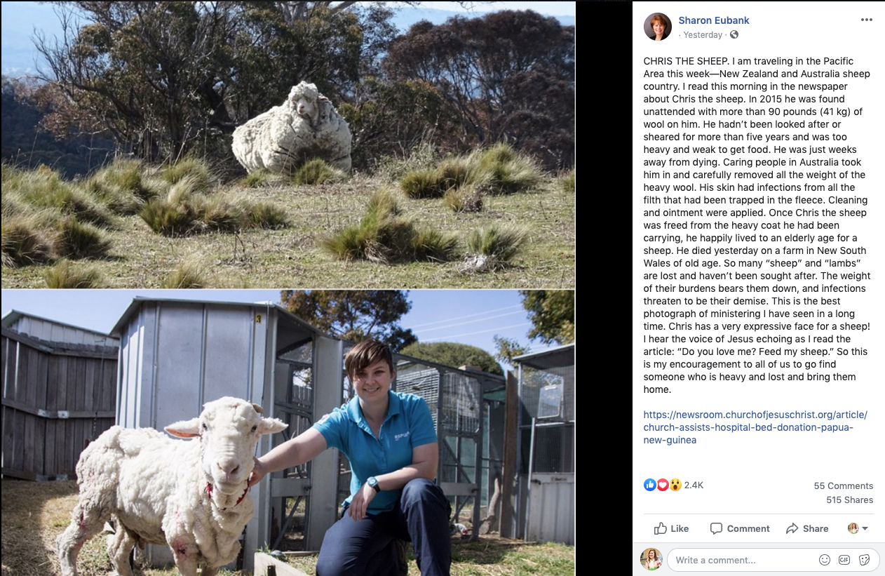 Sister Sharon Eubank shared a story on Facebook about Chris the sheep on Oct. 24, 2019.