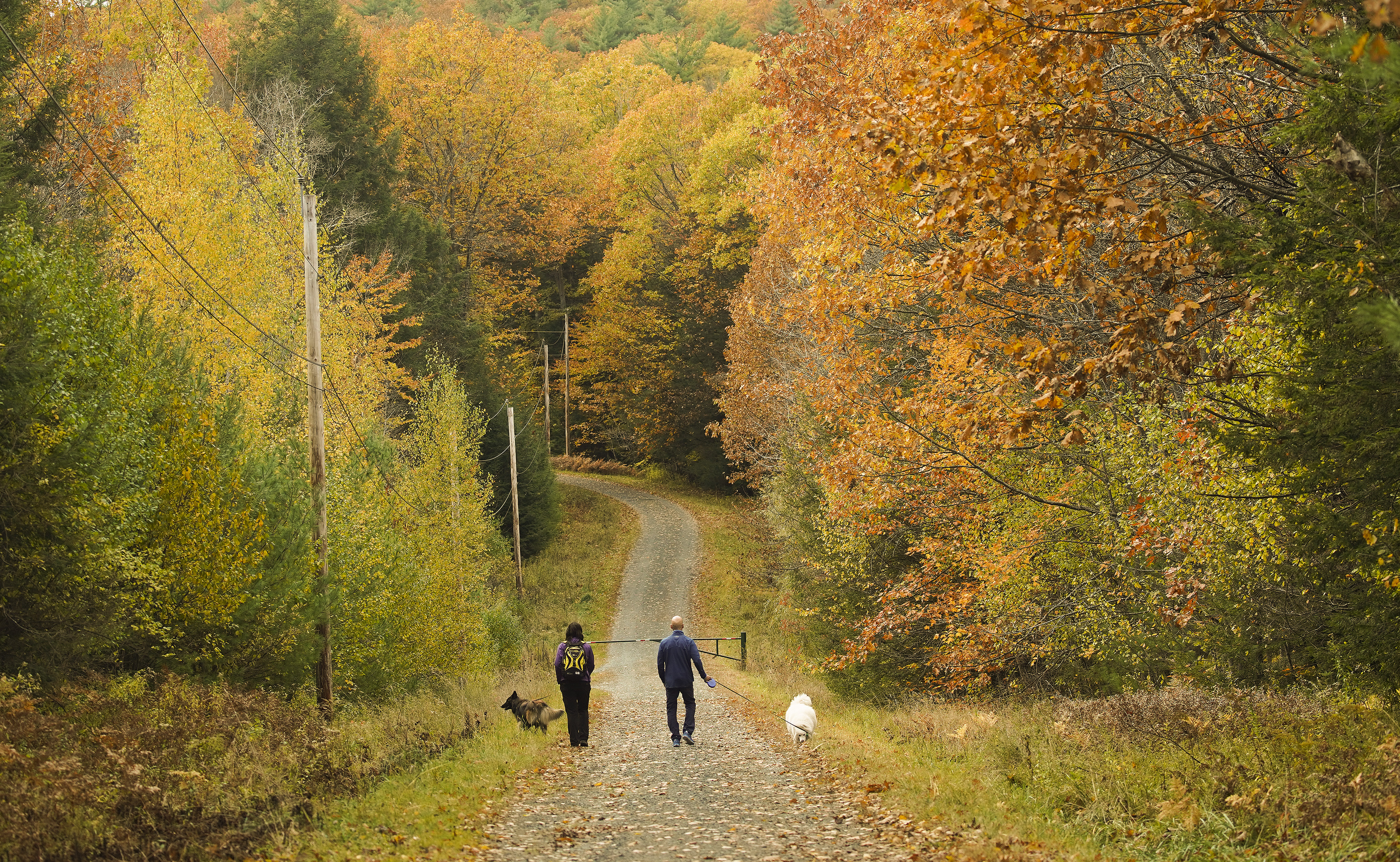 Hikers walk on a trail in Lebanon, New Hampshire on Friday, Oct. 18, 2019.
