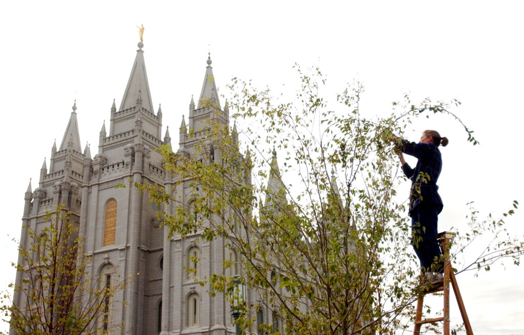 Temple Square groundskeeper Kathryn Brown strings lights on trees planted along the Main Street Plaza Thursday afternoon October 3, 2002. Temple Square is ready to host The Church of Jesus Christ of Latter-Day Saints' semi-anual general conference this weekend.