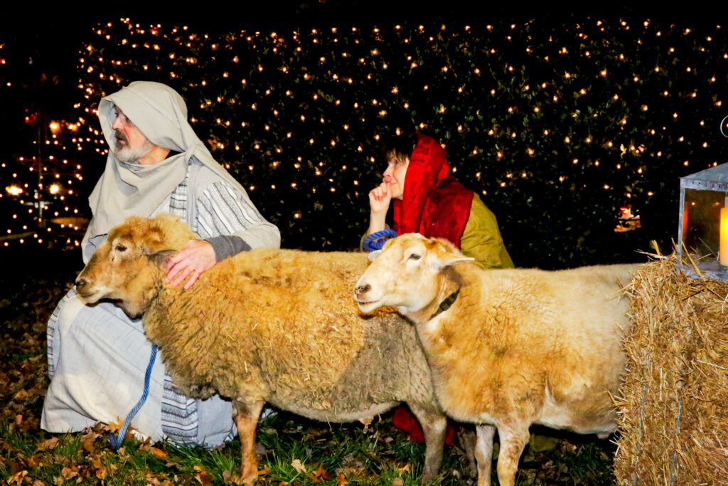 David and Loretta Shepherd, members of the McLean Virginia Stake participate in the drive-thru Nativity and food drive hosted on Dec. 11-12, 2020.