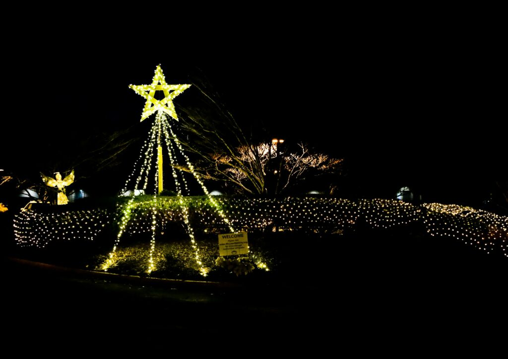 A display of lights and a star welcomes visitors of the McLean Virginia Stake Nativity drive-thru on Dec. 11 and 12, 2020.