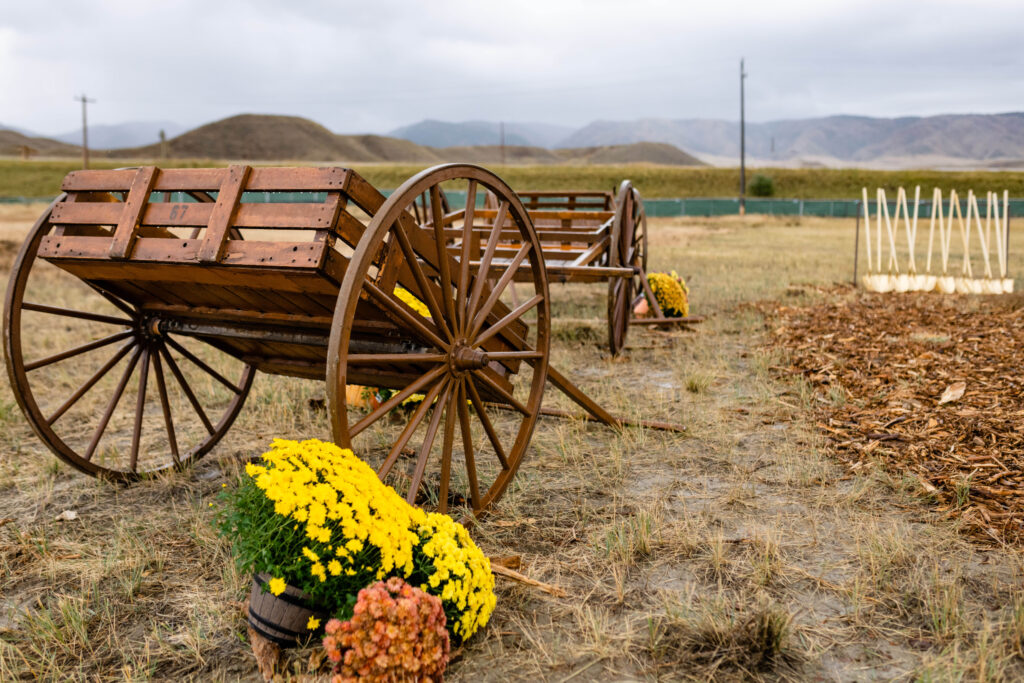 Handcarts and flowers are placed near the Casper Wyoming Temple groundbreaking site on Saturday, Oct. 9, 2021. Shovels can be seen in the background. Early converts of The Church of Jesus Christ of Latter-day Saints migrated west, through Wyoming, mostly using handcarts to transport their personal belongings.